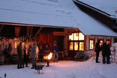Adventszauber auf dem Alpakahof