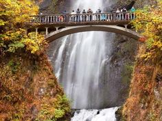 You can see several stunning waterfalls from the Columbia River Gorge while driving along the Columb... - Courtesy of Bill Perry/Shutterstock