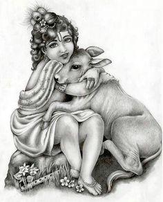 Alive and happy cowsies are greatly loved by Gopal Krishna Lord Krishna Sketch, Radha Krishna Sketch, Krishna Drawing, Krishna Leela, Lord Krishna Images, Radha Krishna Pictures, Krishna Painting, Radha Krishna Love, Hare Krishna