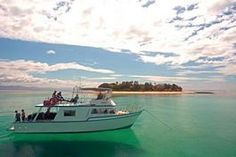 Dive Fiji with Scuba Professionals of Arizona!