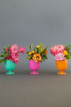 oh joy colorful flowers - Google Search