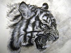 drawing tiger - Goog