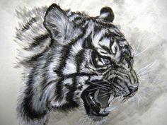 drawing tiger - Goog
