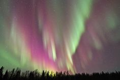 Aurora Borealis - Yellowknife, Canada