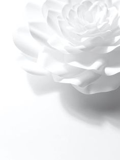 Paper artist Jo Lynn Alcorn for Chanel Camellia