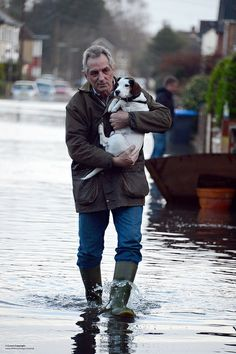 A local resident in Egham carries a dog to safety after flooding had hit the small Surrey town.