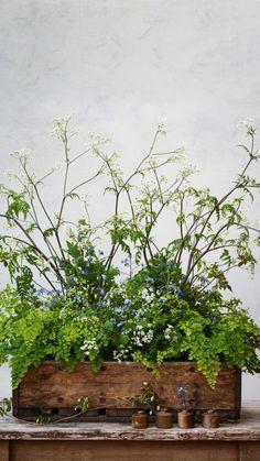 The art of pot-et-fleur: combining houseplants with cut flowers. Indoor Garden, Garden Pots, Indoor Plants, Outdoor Gardens, Hanging Plants, Garden Ideas, Succulents In Containers, Deco Floral, Real Plants