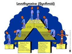 What happens when you take or miss doses of Levothyroxine.