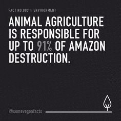 Fact 003. veganfacts someveganfacts vegan govegan cowspiracy veganism veggie animalrights