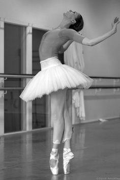 Susanne Grinder rehearsing Swan Lake ♥ Wonderful! www.thewonderfulworldofdance.com #ballet #dance