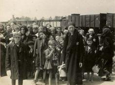 Birkenau, Poland, Women and children standing on the selection platform, 05/1944.
