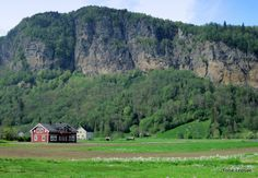 Hardanger. Norway. TONE LEPSOES PICTURES.