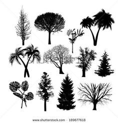 set of silhouettes of trees isolated on white background. Vector - stock vector
