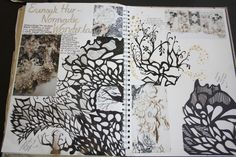 https://flic.kr/p/dro1GN   A2 Art- Personal Investigation, Unit 3 (Natural Forms)   Artist Refrence, in sketchbook, looking at Eunsuk Hur. Page including fineliner illustration work and paper cut.  Dimensions: Double page spread in A3 sketch book
