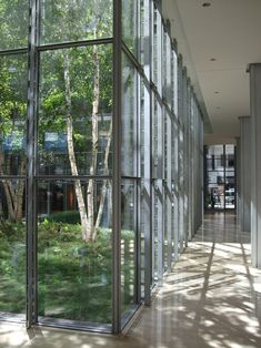 Gallery - The New York Times Building Lobby Garden / HM White Site Architects + Cornelia Oberlander Architects - 6