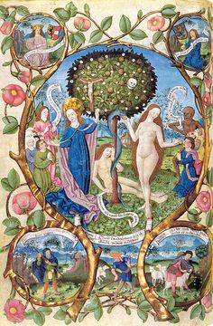 Manuscript - Tree of life and tree of death.                               Illuminated Medieval Manuscript 1483.