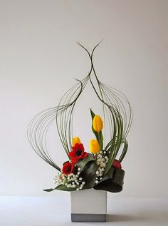 BEAUTY OF FLOWERS AND PLANTS – Communauté – Google+