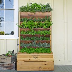 Gronomics Self-Watering Vertical Planter #williamssonoma  going to make this from pallets