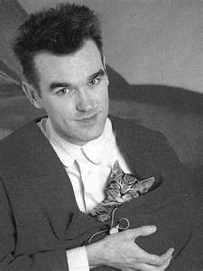 Cats! And #Morrissey  such a beautiful combination!