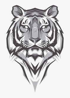 tiger design Century is part of - Shulyak Brothers tiger illustrations Más Tiger Illustration, Tiger Drawing, Tiger Art, Tiger Sketch, Tiger Design, Tiger Tattoodesign, Animal Drawings, Art Drawings, Fu Dog