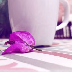 "Gefällt 1 Mal, 1 Kommentare - Rayaworx Coworking (@rayaworx) auf Instagram: ""Coffee or tea in our patio - it's up to you, dear coworker ☕ Kaffee oder Tee in unserem Innenhof -…"""
