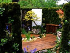 Wood flooring & bench; hedges create a secret room, a place for meditation & tranquility. Large bonsai accents this special space