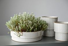 Planter by Bruce Rowe from Anchor Ceramics   http://www.yellowtrace.com.au/bruce-rowe-anchor-ceramics-interview/