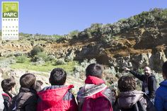 Osservando i filoni nettuniani Grand Canyon, Dolores Park, Nature, Travel, Naturaleza, Trips, Viajes, Traveling, Nature Illustration