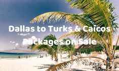 Dallas to Turks & Caicos 7 Night Package on Sale - Palm Tree Trips Flight Deals, Turks And Caicos, Palm Trees, Awesome, Amazing, Dallas, Trips, Packaging, Night