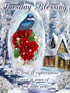 Tuesday Blessings! Christmas Morning, Christmas Bulbs, Tuesday Greetings, James 3, Word Of Faith, Make Peace, Days Of Our Lives, Facebook Sign Up, Homemade Gifts