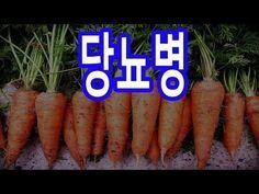 당뇨 혈당수치 뚝 떨어뜨리는 10가지 방법 - YouTube Korean Food, Beauty Care, Diabetes, Remedies, Health Fitness, Knowledge, Healthy, Youtube, Magnolias