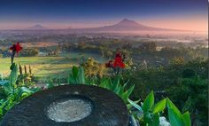Keraton Ratu Boko Lokasi: Jalan Raya Jogja – Solo, Prambanan, Sleman, Yogyakarta Telepon: (0274) 496 510 Jam Operasional: 06.00 – 17.00 Tiket Masuk: Rp25.000,-
