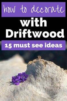 Decorating with driftwood is rustic, beautiful and budget-friendly. Create DIY driftwood art, frames, sculptures, clocks, furniture and more. Check out these 15 crafts and tutorials using driftwood that will be perfect for a coastal or boho home. #DIY #coastal #homedecor #crafts #driftwood #beach Diy Wall Decor, Boho Decor, Diy Home Decor, Driftwood Beach, Driftwood Art, Rustic Outdoor Benches, Art Frames, Rustic Crafts, Backyard Makeover