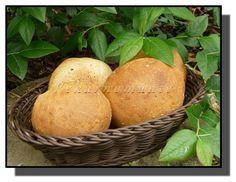 Pšeničné kváskové bulky se sezamem – PEKÁRNOMÁNIE
