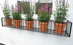 Large Steel Window box, Classic Grande, x in Black: My Window Box - We specialise in window boxes, manufacturing beautiful window boxes with traditional and contemporary designs out of cast aluminium, steel and fibreglass. Metal Window Boxes, Window Box Flowers, Wrought Iron Window Boxes, Balcony Plants, House Plants Decor, Potted Plants, Garden Shelves, Container Plants, Succulent Containers