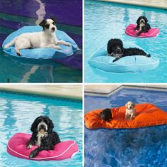 PupFloat - Floating Dog Beds  First I need a pool. Then I need for Falkor to want to swim. Then I also need a pet otter to hang out with the two of us.