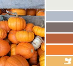 I love the orange and grays. #colorpalette