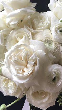 Summer Flowers   White Flowers   Wholesale Flowers