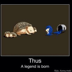 I'd like to think my old pet hedgehog, Juan Carlos, was related to #Sonic.