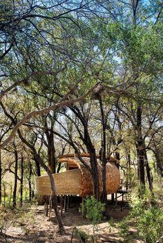 Sandibe Okavango Safari Lodge in Botswana.  Brought into being by Fox Browne Creative and Michaelis Boyd Associates with Nicholas Plewman Architects,