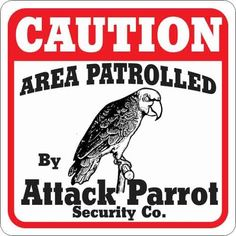 Attack Parrot on Duty-- no Smoking Diy Parrot Toys, Parrot Pet, Parrot Bird, Bird Mom, Crazy Bird, Best Pet Birds, Funny Warning Signs, Funny Parrots, African Grey Parrot