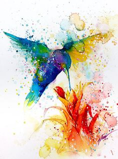 Discover thousands of images about Kolibri paar Aquarell Vogel Kunst Blumendruck von DeanCrouserArt Watercolor Paintings Of Animals, Watercolor Bird, Animal Paintings, Watercolor Background, Watercolor Landscape, Splash Watercolor, Simple Watercolor, Paintings Of Birds, Decorative Paintings