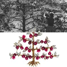 Heiress and horticulturist Bunny Mellon dotted her fabled estate with many fruit trees, like the espalier apple tree, which she is seen tending here in 1982. Around 1950, Duke Fulco di Verdura designed a 14-karat-gold and platinum brooch for her, modeled after the same tree.
