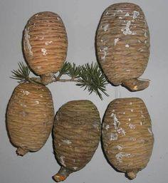 Cedar of Lebanon   Trees of Joy