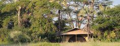 An oasis found at ChemChem Lodge, Lake Manyara, Tanzania