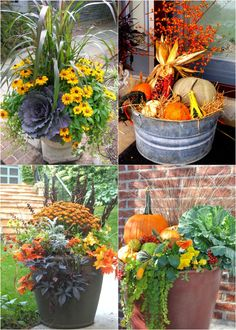Fall Flower Pots, Fall Planters, Planters Flowers, Mums In Planters, Autumn Planter Ideas, Outdoor Pots And Planters, Garden Planters, Jardin Decor, Fall Containers