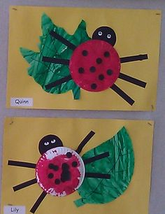 Ladybug Paperplate Craft - kids painted small paperplate red and added black stickers when dry. Whole class painted a large roll of paper green using matchbox cars. We added legs and face plus cut individual leaves out for them.
