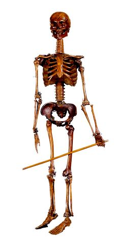 Articulated carved oak skeleton made circa 1680 [substantially brightened because for some weird reason, it was pinning so dark you could hardly see it] Skeleton For Sale, Get Up And Walk, Skeletons, Macabre, Victorian Era, Natural History, Folklore, Crosses, Skulls