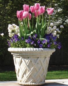 spring planter bulbs and pansies