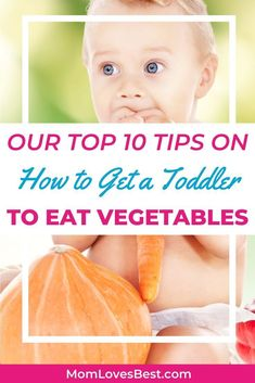 Veggies are important for the nutrients and as a low-calorie food source to help prevent gaining extra pounds. We'll share 10 tips on how to get your toddler to eat more of these nutritional powerhouses. Carrot Recipes, Baby Food Recipes, Toddler Recipes, Toddler Vegetables, Zucchini Tart, Candied Carrots, Healthy Toddler Meals, Baby Led Weaning, Low Calorie Recipes